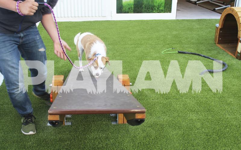 cesped artificial para mascotas